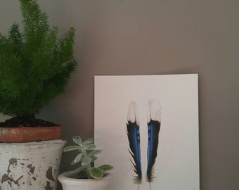 Original Blue Jay Feather Art, watercolor painting, modern decor, home decor, boho decor, natural decor, feather sketch