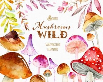 Wild Mushrooms. 41 Watercolor separate elements, autumn, leaves, fairytale, floral, halloween, harvest, thanksgiving, greetings, woodland
