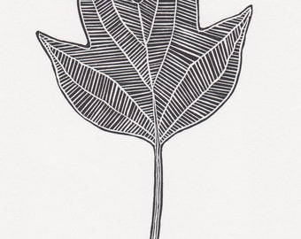 "Block print: Tulip Tree leaf - limited edition hand pulled fine art block print, linocut print (5 x 7"")"