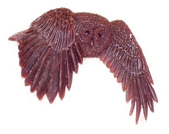 new Design of a Barred Owl ...  named {  Silents  }