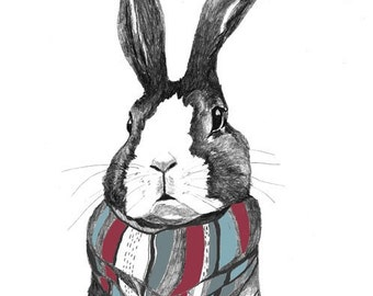 Rabbit Art, Rabbit Drawing, Bunny Art, Bunny Drawing  - Rabbits Love Scarves