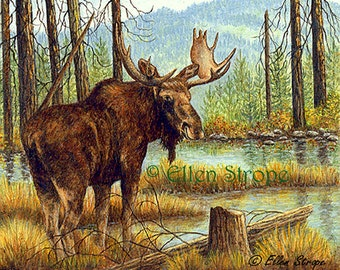 MOOSE Giclee Print - 'Prince of the Forest' Bull Moose