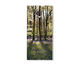 Clock - Tall trees by Photographic Artist Mike Ralphs