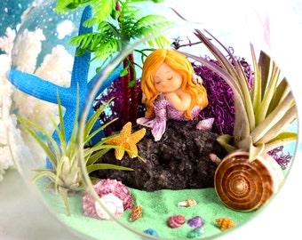 """Mermaid Beach Terrarium Kit ~ 7"""" Air Plant Terrarium Kit ~ Coastal Living Beach Decor ~ Mermaid Figurine ~ Resting Mermaid on a Rock ~ Gift"""