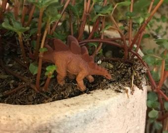 1 Miniature stegosaurus dinosaur for fairy garden / succulent / terrarium / mini garden