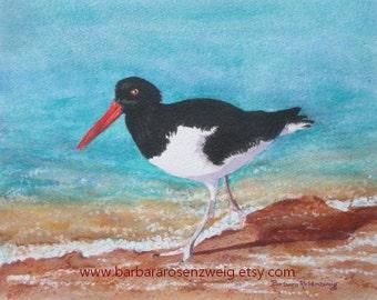 Beach Decor, Beach Art,  BIRD PRINT, Coastal Print, Beach Painting, Bird Painting, Oystercatcher Watercolor, Bird Wall Art, Beach Wall Art