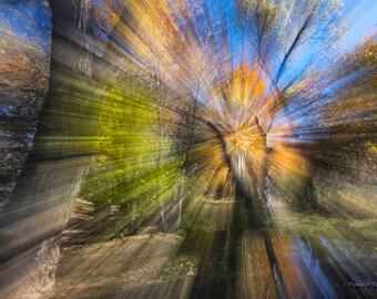 Arizona Autumn Kaleidoscope Print