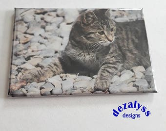 Kitchen Magnets, Fridge Magnets, Cat Magnets, Cute Cat Magnets, Small Gift, Cute Fridge Magnets, Photo Magnet, Gift Under 5, Kitty Magnet
