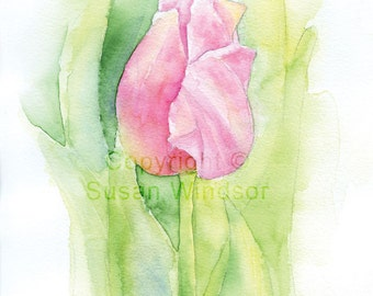 Pink Tulip Watercolor Painting Giclee Print 8 x 10 (8.5 x 11) Floral