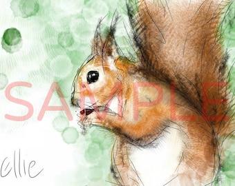 Squirrel drawing // squirrel art print // squirrel print // squirrel gift // forest nursery // animal nursery decor // woodland art