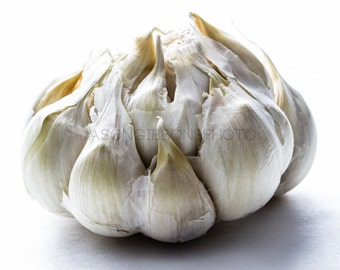 Garlic Photography, Wall Art, Home Decor, Office Decor, Still Life