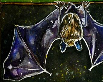 Watercolour Bat painting - Batty