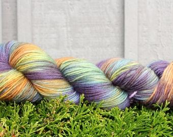 Chameleon - Hand Painted Superwash Merino Yarn DK Light Worsted