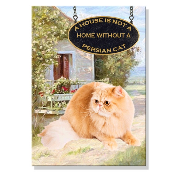 Persian Cat a House is Not a Home Fridge Magnet No 4