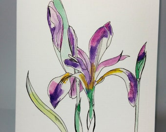 Greeting Card - Iris (Flowers) ~ Ink & Watercolour Drawing