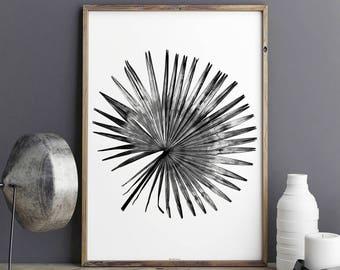 Black and White Art Print - Botanical Print - Minimalist Print - Palm Leaf Print - Large Wall Art - A3 Print - A2 Print