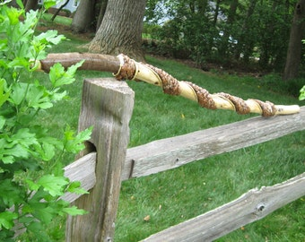 """Walking Stick  - Titled """"Season's Change"""" - Spring and Summer walking or hiking stick in white oak, honey suckle vine, and pine cone pieces."""