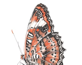 Butterfly print of watercolor painting, butterfly watercolor, insect watercolor, orange & black wall art, garden wall art, 5 by 7 size B3916