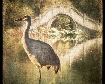 CRANE BEFORE THE BRIDGE, Signed, Original, Fine Art Photograph