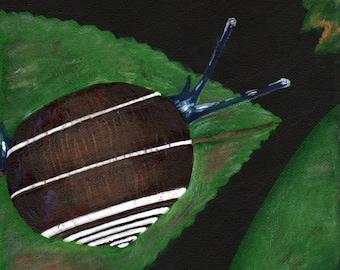 Snail Art, Original Acrylic Painting On Canvas, Wildlife Art, Nature Artwork, Brown And Green, Snail Nursery Art, Woodland Decor - 8 x 10