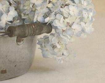Flower Photography, Rustic Wall Art, Country Bedroom Decor, Pale Blue Hydrangea Photograph, Neutral Art, Farmhouse Decor | 'Soft Baby Blues'