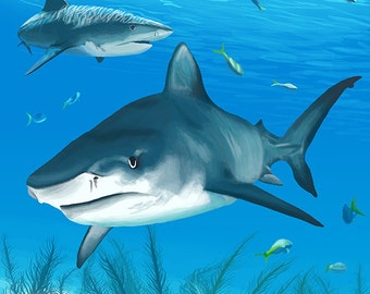 Tiger Shark (Art Prints available in multiple sizes)
