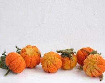 Six needle felted pumpkins, Halloween & thanksgiving home decor, eco decorations