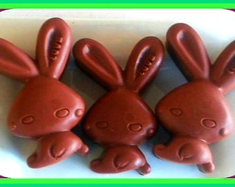Soap - Bunnies - Easter Bunny - Chocolate Bunny - Soap for Kids - Set of 3 - Free U.S. Shipping - Animal Soap - Holiday Soap