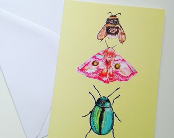 Blank Greetings Card~ Insect Nature Card Illustration ~ Card for Her ~Birthday Card~  Thank you Card ~ Bee / Moth and Beetle Art Card