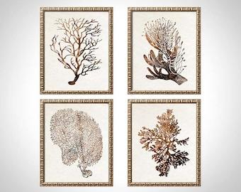 Sepia Brown Coral Print Set of Four Coral Art Prints, Sepia Beach House Art, Brown Art, Living Room Art, Sepia Brown Artwork, Brown Coral,