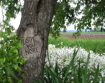 Love You More, Digital tree carving with message, Instant Digital download, Field of Daisies, Under 5 dollars, Scenic Photography, Gift