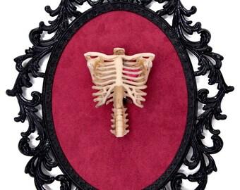 Eternal Love - Heart inside a Skeleton Ribcage - Victorian Framed Object - Wall Art Decor 10.5x13.5