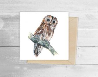 15cm x 15m Tawny Owl Greetings Card
