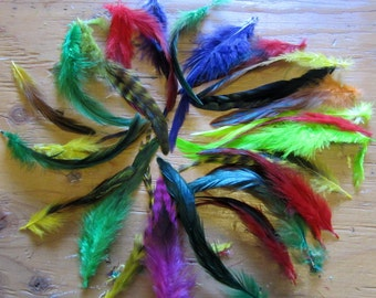 50 assorted  feathers Schlappen Dyed 3 to 6 inches  K131
