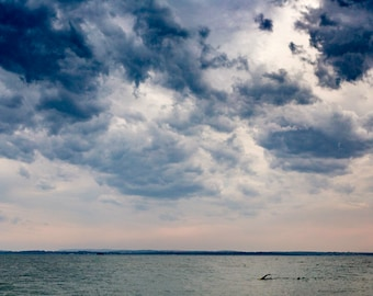 SWIM - colour print, fine art, swimming, stormy skies, southsea, sunset, 7x5, mounted print, lonely, Portsmouth, solent , free uk postage