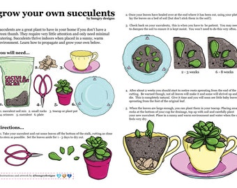 Grow Your Own Succulents - Propagation Instructions - A4 Art Print by Hungry Designs