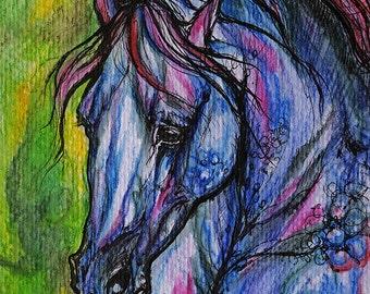 Arabian horse, equine art, equestrian portrait,  original ink and watercolor painting