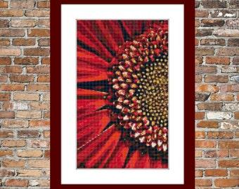 Red Gerbera - a Counted Cross Stitch Pattern