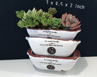 Rare Succulent-Medium Rectangle Planter with Drainage Hole