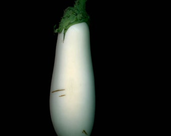 White Aubergine // scanography  5x7 photography