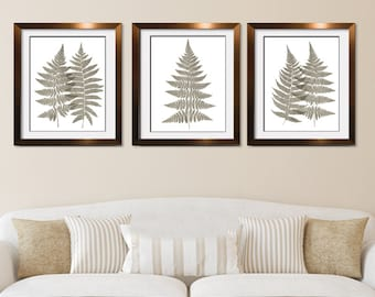 Fern Fantasy Impressions (Series A3) Set of 3 - Art Prints (Featured in Italian Stone) Nature Woodland Inspired