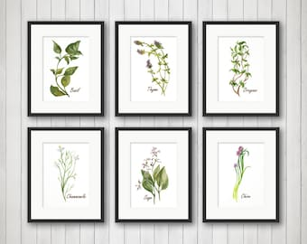 Watercolor Herbs Prints,Herb Print, Herbs Kitchen Decor, Botanical Print, Kitchen Art, Culinary Herb Print