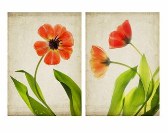 Tulips Poster Set, Woodland Art, 12 x 16 Orange Tulip Art Prints, Cottage Chic Decor, Scanner Art,  Flower Photography, Sheer X-Ray