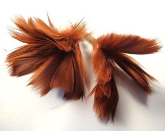 F l o w e r P l u m e s - a pair of Orange Brown Feather Flowers.