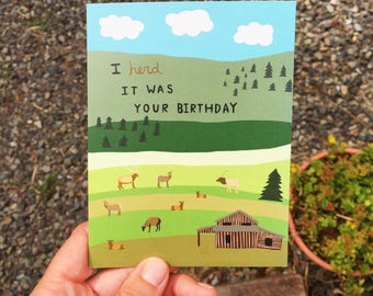 Greeting Card - Birthday, Elk Herd, Animals, Nature, Outdoors