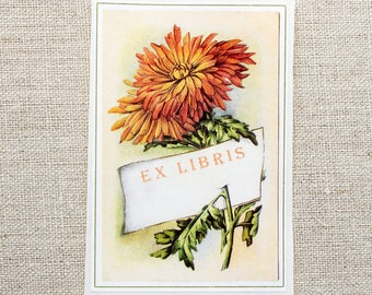 autumn mum book plates - floral bookplates - Ex Libris - chrysanthemum bookplate stickers - bookworm for her - custom bookplate - fall gift