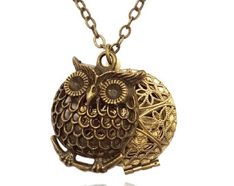 Essential Oil Diffuser Necklace, Aromatherapy Necklace, Brass-tone Owl Locket Pendant with Charms, Includes reusable felt pads
