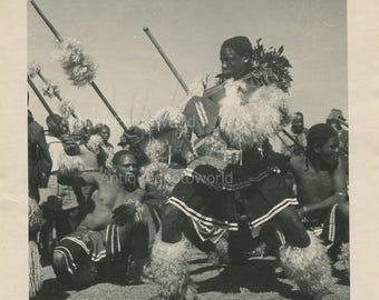 Zulu dancers rare vintage photo Africa