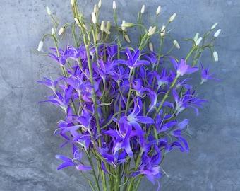"Purple Gloriosa Orchid Flower, Faux flower, Artificial flower, Wedding Flowers, Silk orchid - 30"" Tall"