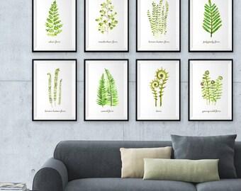Botanical Print, Fern watercolor Painting, Fern Leaf Prints, Set of 8 Botanical Prints, Tropical Leaf Print Spring Decor, Living Room Art
